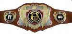 Bright Gold & Silver Legion Belt with Brown Leather CHAMPIONSHIP BELTS AND CHAINS