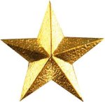 Star Pin Chenille Lapel Pins