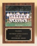 Plaque with Slide-in Photo or Certificate Holder Hockey Trophy Awards