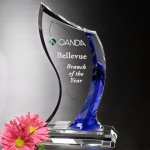 Potomac Indigo Award Sales Awards